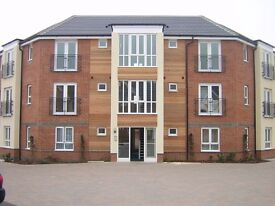 Delightful, modern 2 bed flat for rent from May 19th. Quiet, off Gloucester Rd. Parking. £1100pcm