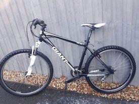 Giant Revel mountain bike
