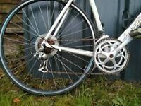 Barracuda road bike bicycle racing cycle