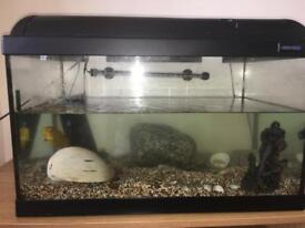 BIG AQUARIUM WITH 3 ACCESSORIES AND A WATER PUMP.~ QUICK SALE ~ OFFERS WELCOME ~