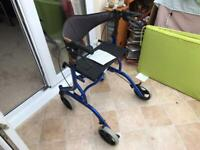 Mobility folding trolley with brake