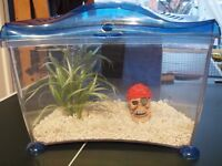 Small fishtank suitable for child -ready to go.
