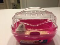 Dwarf hamster with transporting box, ball, hamster fluff and hay. Look for a new home ASAP