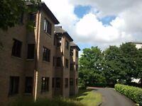 Spacious double bedroom & en-suite to rent in flat share - Pollokshields