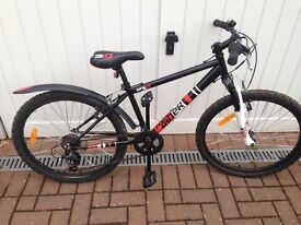 £50. Decathlon Rock Rider 50 Kids Bike