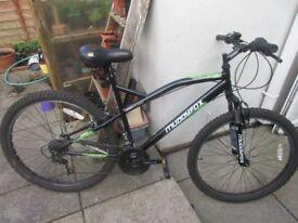 Muddy Fox Mountain Bike Bicycle, Cheap Student