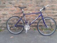 "Saracen Powertrax 19"" fully rigid Retro Mountain Bike Original MINT Condition Full Alivio Group Set"