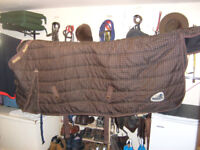 Stable Rug for a horse
