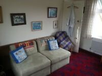 2 comfortable sofa chairs, make full-length guest beds - hardly used - will sell individually