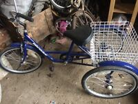 Adults ProBike tricycle