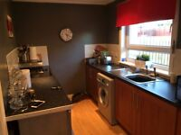 Lovely 2 bed semi detached available to swap in Baillieston area .