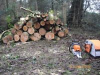 LOGS, LOGS and MORE LOGS