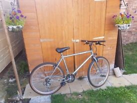 Female Diamond Back Bicycle in good condition