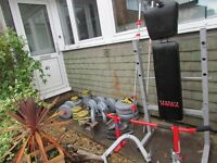 York Weight equipment for sale