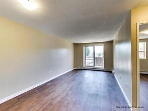 Bright 1 Bedroom Apartment for Rent @ 352 Dacey, Sault Ste Marie