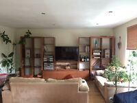 Large double bedroom in well furnished flat