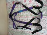 Adults full body harness