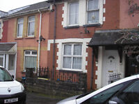 house to rent in The Avenue Pontycymmer,available march 1st