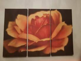 Canvas x 3 from Next