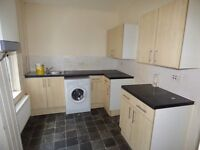 Coldwell Terrace,Gateshead. 2 Bed Immaculate Flat with Yard.No Bond! DSS Welcome!