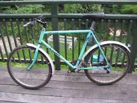 Man's Raleigh Lizard Mountain Bike