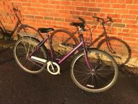 Raleigh Pioneer Caprice. Serviced, Lovely condition, Free Lock, Lights, Delivery