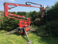 Tree cutting , Hedges trimming, Gardening services