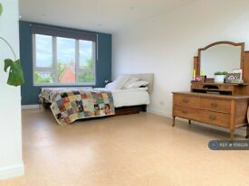 4 bedroom house in Buckleigh Road, London, SW16 (4 bed) (#1158229)