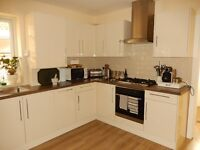 Two Double Bedroom Ground Floor Flat with Private Garden, Harringay N4