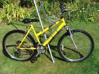 Ladies/Girls Raleigh Mountain Bike 26in Wheel 19in Frame 21 Gears In Excellent Condition