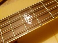 electro acoustic bass solid top rrp £569