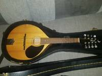 Jimmy Moon mandolin with hardcase