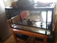3ft full glass Aquarium wish accessories