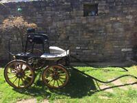4 wheel carriage Fenix Flyer suit 12.2 to 14.2hh pony