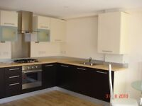 Double room available in Modern 2 bed flat in Central Guildford