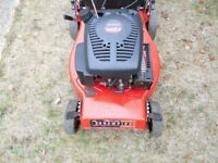 champion self propelled mower