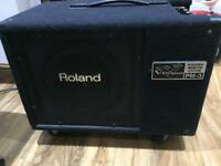 Roland PM3 drum/keyboard/guitar monitor
