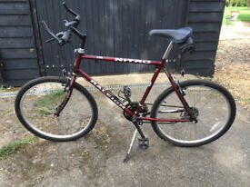 """Raleigh Nitro Gents Mountain Bike. 21"""" Frame."""