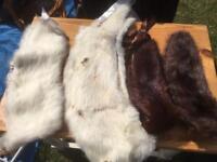 Vintage animal pelt scarves