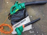 Leaf Blower/Vacuum (Black & Decker) £30