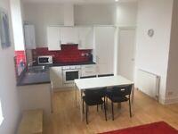 Lovely 2 large bedroom flat in Rosemount Place