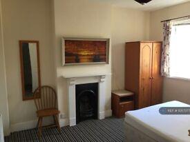 1 bedroom in Okehampton Road, Exeter, EX4 (#1057377)