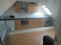 2 Bedroom 2 bathroom duplex apartment in Becontree part dss with guarantor accepted