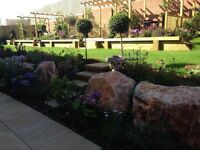 Offering low cost high quality maintenance for all types of gardens.