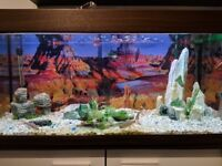 Eheim Fish Tank with Accessories, External Filter and Fish