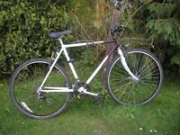 raleigh pioneer trail 21 speed,21 in frame hybrid,runs very well,reynolods 501,tidy bike
