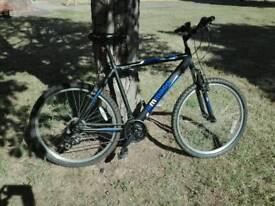 Ammaco MTX300 mens bike