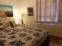 LUXURY Studio FLAT -Separate KITCHEN -laminated flooring KING size bed ,150 meters from TUBE £190 Pw