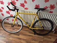 Mango Bikes Custom Single Speed Bike / £200 O.N.O