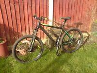 Carera mountain bike brand new not gt boardman specialized trek